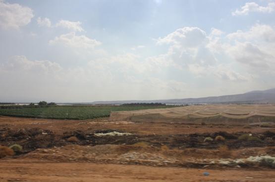 Des cultures israéliennes en territoires illégalement occupés, dans la vallée du Jourdain. (Photo Solidaire, Marco Van Hees)