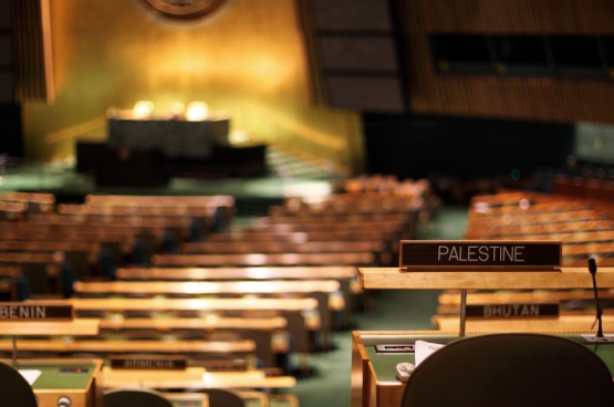 « Nous voulons en finir avec les négociations et reprendre la lutte politique, y compris au sein des Nations-Unies », explique l'écrivain et activiste palestinien Khaled Barakat. La Palestine est considérée comme observateur non-membre de l'ONU depuis novembre 2012.  (Photo real.tingley / Flickr)