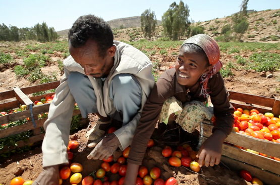 Oxfam veut des systèmes alimentaires équitables et durables dans lesquels les intérêts des producteurs et des travailleurs priment. (Photo World Bank Photo Collection, Flickr)